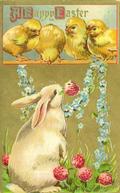 Chicksfreevintagecardspng