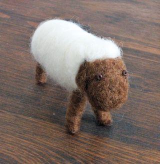 Sheepfront