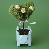 Heart-topiary-blog
