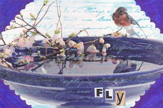 Flybirdkoppel2