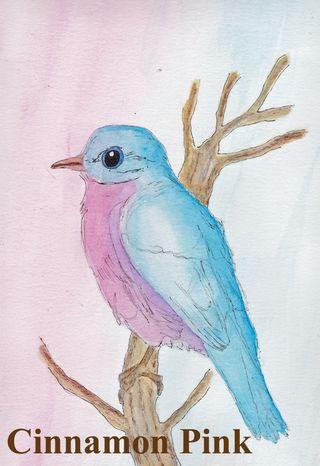 WatercolorBirdKoppelDarlene