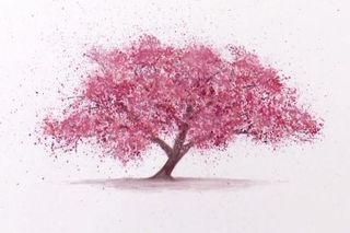 Cherry-blossom-featured-image-360x240
