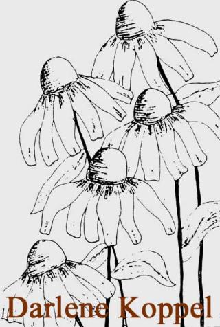 FlowersSketchKoppelDarlene